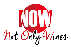 Not Only Wines Logo